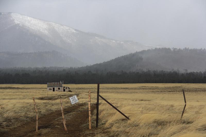 Nach dem Blizzard, Coconino Forest